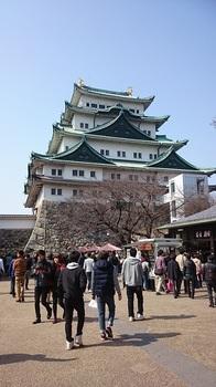 名古屋城1.jpg